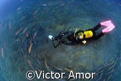 Ana by Victor Amor