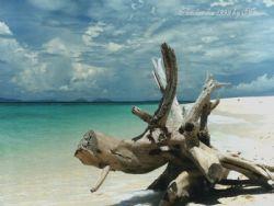 Thailandia - 50 mm by Mauro Serafini