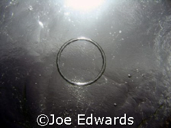 Bubble Ring by Joe Edwards