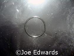 Bubble Ring by Joe Edwards