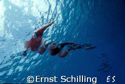 Bonaire Squid Parade by Ernst Schilling