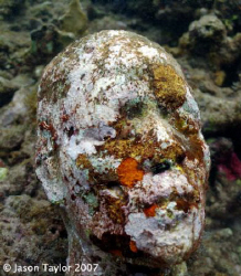 Grace after 1 year. Photo of sculpture by Jason de Caires... by Jason Taylor