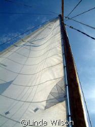 Sailing away......... by Linda Wilson