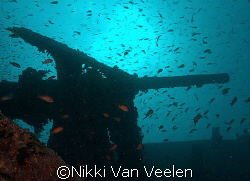 Gun on the Thistlegorm taken with SP350. by Nikki Van Veelen