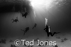 Back to the boat by Ted Jones