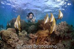 i shoot this in menjangan island, niorthern bali  by Iman Brotoseno