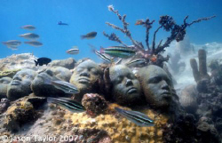 The Tamm cc project, sculpture by Jason de Caires Taylor.... by Jason Taylor