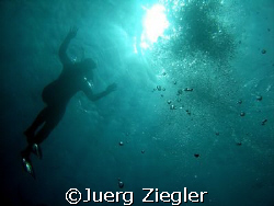 Hi - are you in the water also ?