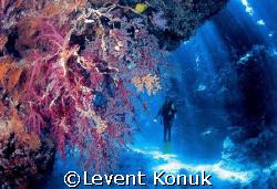 Light Rays by Levent Konuk