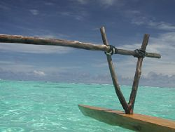 Oops, sent a mini-file that last time.  Outrigger on a tr... by Dianne Nottke