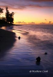 """Waialua Coconut Sunset"". Photo taken on Oahu, Hawaii's N... by Mathew Cook"