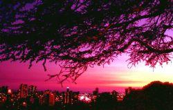 Honolulu sunset; Nikon F - 24mm lens by Rick Tegeler