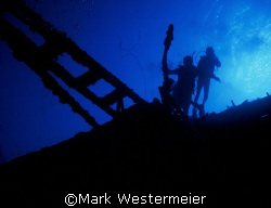 Hilma Hooker - Image taken in Bonaire with a Nikonos V, 1... by Mark Westermeier