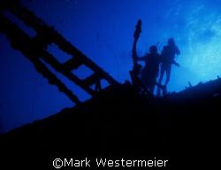 Hilma Hooker - Image taken in Bonaire with a Nikonos V, 1... by Mark Westermeier