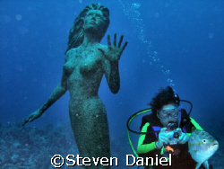 The Mermaid, Amphitrite and Diver at Sunset House Grand C... by Steven Daniel