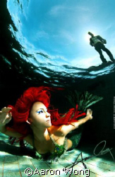 "This shot, ""The Mermaid"" is 1 of the images from my WATER... by Aaron Wong"