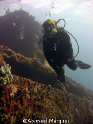 Sorich in the Wit Shoal, St. Thomas, V.I.U.S. by Abimael Márquez