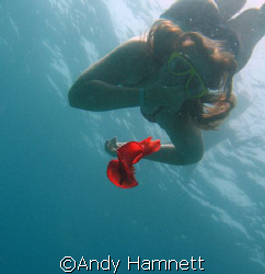 A friends daughter checking out a Spanish Dancer. by Andy Hamnett