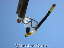 the invisible diver by Christian Cauwe