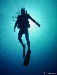 My dive buddy, Doug, ascending after a beautiful dive in ... by Steven Anderson