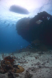 Wreck of the Gosei Maru - Chuuk/Truk Lagoon. by Jim Garland