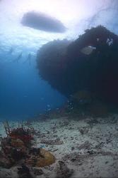 Wreck of the Gosei Maru - Chuuk/Truk Lagoon. by Jim Garland