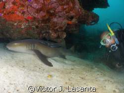rodney and he new friend in the super bowl dive site in p... by Victor J. Lasanta