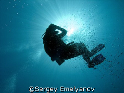 Birth of the diver by Sergey Emelyanov