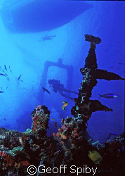 "taken at ""the ships graveyard"", Lavhiyani Atoll, Maldives by Geoff Spiby"