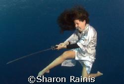 Aqua Samorai. Only contrast was photoshoped.  by Sharon Rainis