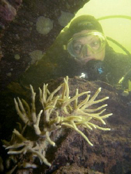 """You neednt have the sea to see """"corals"""". This was taken i... by Alena Vorackova"""