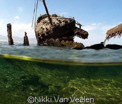 Maria Schroeder wreck (ex Rolf jarl) taken at Nabq Park w... by Nikki Van Veelen