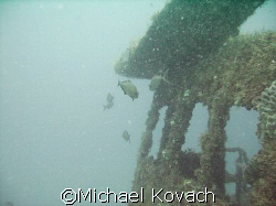 The pilot house on the Ken Vitale, sunk as part of the ar... by Michael Kovach