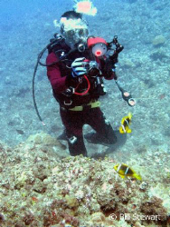 My buddy photographing anemonefish on a reef near Umatac,... by Bill Stewart