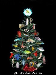 Xmas tree with a difference! Merry XMAS!! by Nikki Van Veelen