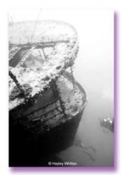 Thistlegorm - Red Sea, taken with a housed Canon D60 by Hayley Whitten
