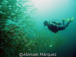 """""""El Flaco"""", Punta Gorda, North Pacific, Costa Rica by Abimael Márquez"""