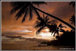Yellow submarine Alona beach Philippines D200/12-24 mm by Yves Antoniazzo