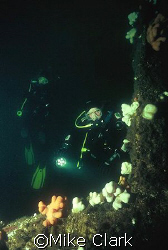 Wreck Divers 30 metres down on the wreck of the Primrose.... by Mike Clark