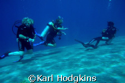 Mermaids, three stages of learning from the advanced onth... by Karl Hodgkins