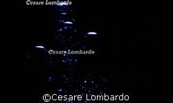 Mediterranean Sea Bubbles by Cesare Lombardo