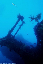 Picture taken at the Liberty wreck in Tulamben, North-Eas... by Anouk Houben