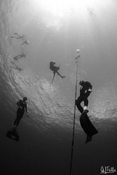 Freedivers training. These guys where going down to about... by Arthur Telle Thiemann