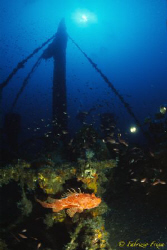 """The wrecks of the KENT as the """"ship of the corani"""" is fou... by Fabrizio Frixa"""