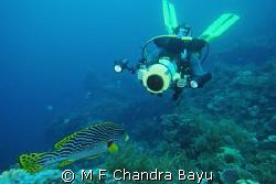 Liberty Wreck - Tulamben by M F Chandra Bayu
