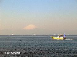 Looking across Sagami Bay at Mount Fuji. Photo  taken on ... by Bill Stewart