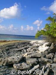 isola maldiviana  by Paolo Zulli
