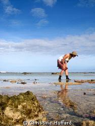 tropical tidepooling by Christine Huffard