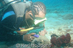 Divemaster checking out a Black frogfish a fair amount of... by Karl Hodgkins
