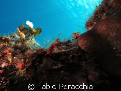Sul ciglio del burrone by Fabio Peracchia